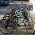 Biciklističke ture - staze otoka Paga